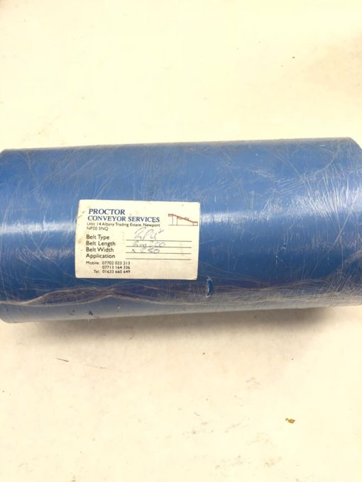 NEW PROCTOR CONVEYOR 2PUB 2M200 LENGTH 250MM WIDTH CONVEYOR BELT, BLUE, (TLO) 1