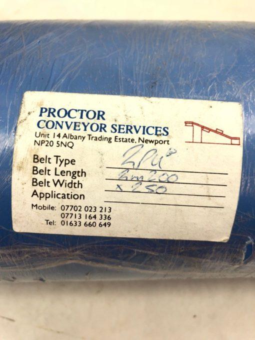 NEW PROCTOR CONVEYOR 2PUB 2M200 LENGTH 250MM WIDTH CONVEYOR BELT, BLUE, (TLO) 2